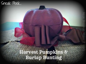 sneak peak harvest pumpkins and burlap bunting